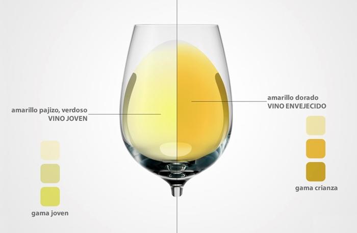 ¿Qué significado tiene el color del vino blanco?